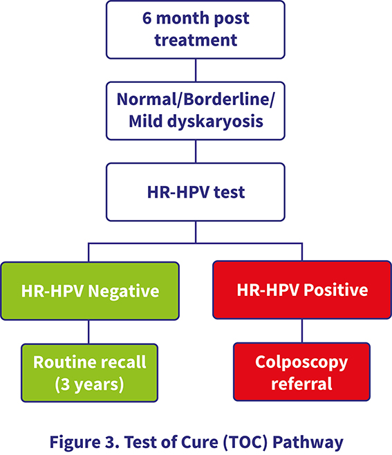 hpv positive means cancer)