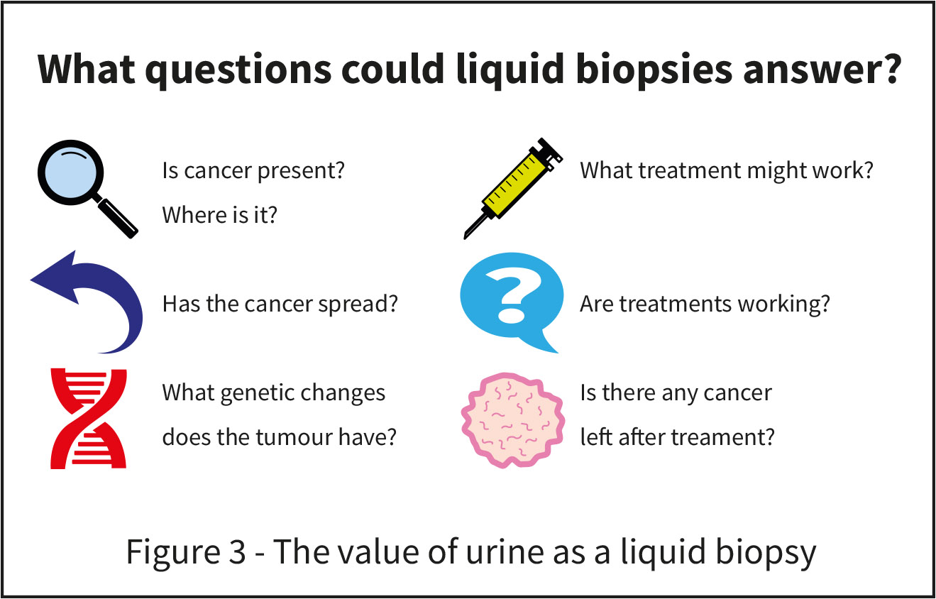 The value of urine as a liquid biopsy